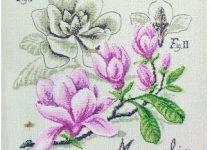 magnolia manolya
